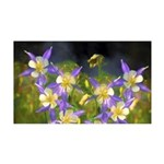 Colorado Blue Columbine 35x21 Wall Decal
