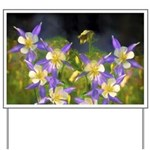 Colorado Blue Columbine Yard Sign