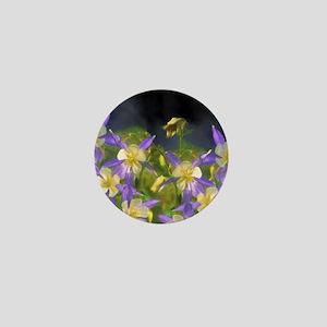 Colorado Blue Columbine Mini Button