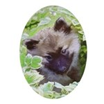 Keeshond Puppy Oval Ornament