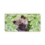 Keeshond Puppy Aluminum License Plate