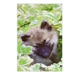 Keeshond Puppy Postcards (Package of 8)