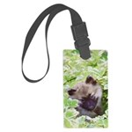 Keeshond Puppy Large Luggage Tag