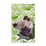 Keeshond Puppy 20x12 Wall Decal