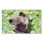 Keeshond Puppy Sticker (Rectangle)