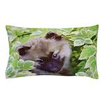 Keeshond Puppy Pillow Case