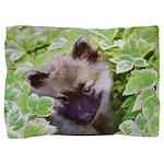 Keeshond Puppy Pillow Sham