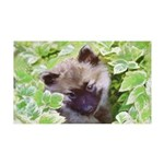 Keeshond Puppy 35x21 Wall Decal
