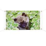 Keeshond Puppy Banner