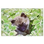 Keeshond Puppy Large Poster