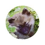 Keeshond Puppy Button