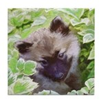 Keeshond Puppy Tile Coaster
