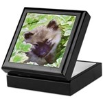 Keeshond Puppy Keepsake Box