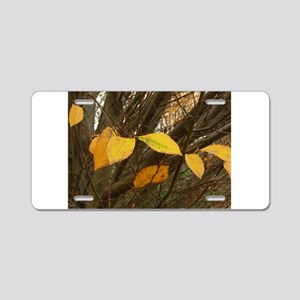 yellow leaves on fall tree Aluminum License Plate
