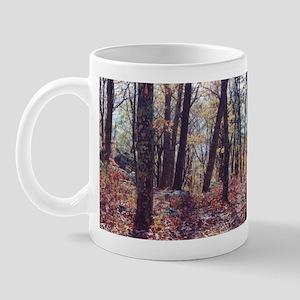 Skyline Drive Woods Mug
