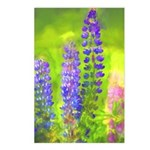 Lupines Postcards (Package of 8)