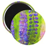 Lupines Magnet
