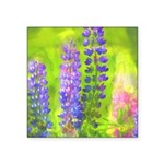 Lupines Square Sticker 3