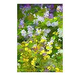 Maine Impasto WIldflowers Postcards (Package of 8)
