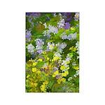 Maine Impasto WIldflowers Rectangle Magnet