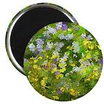 Maine Impasto WIldflowers Magnet