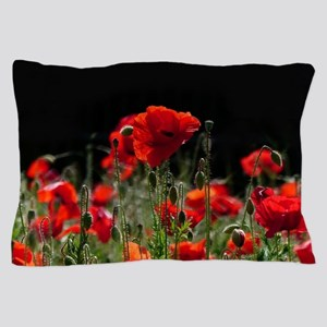 Red Poppies in bright sunlight Pillow Case