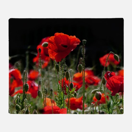 Red Poppies in bright sunlight Throw Blanket