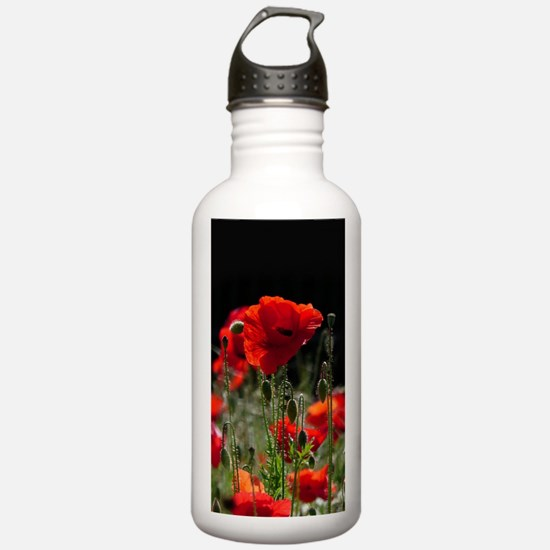 Red Poppies in bright Water Bottle