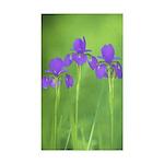 Purple Iris Sticker (Rectangle 10 pk)
