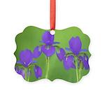 Purple Iris Picture Ornament