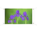 Purple Iris Banner