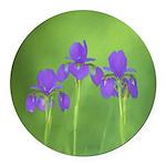 Purple Iris Round Car Magnet