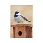 Chickadee on Birdhouse Rectangle Magnet (100 pack)