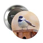 Chickadee on Birdhouse 2.25