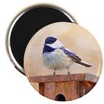 Chickadee on Birdhouse Magnet