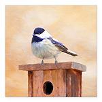 Chickadee on Birdhouse Square Car Magnet 3