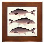 Nile Elephant-snout fish Framed Tile