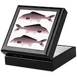 Nile Elephant-snout fish Keepsake Box