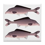Nile Elephant-snout fish Tile Coaster