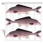Nile Elephant-snout fish Shower Curtain
