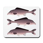 Nile Elephant-snout fish Mousepad
