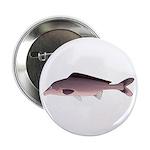 Nile Elephant-snout fish 2.25