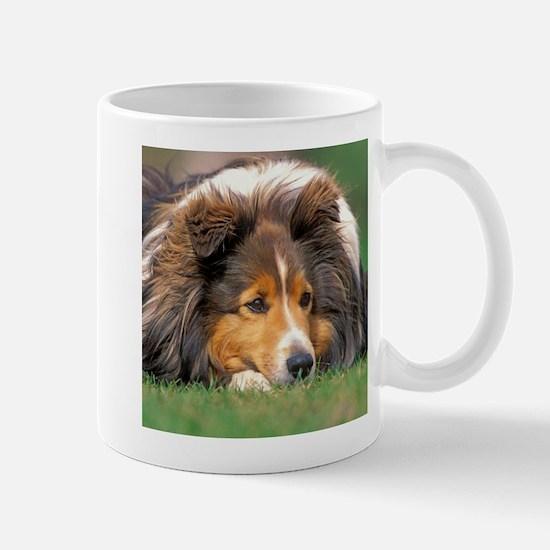 Sheltie portrait Mugs