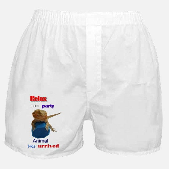 Cute Bearded dragon Boxer Shorts