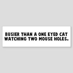 Busier than a one eyed cat wa Bumper Sticker