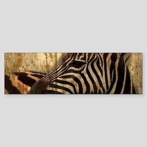 rustic wood safari zebra Bumper Sticker