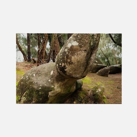 Phallic Rock in Palaau State Park Molokai Magnets