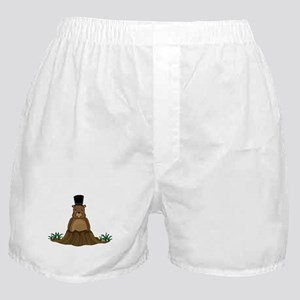 Groundhog Boxer Shorts