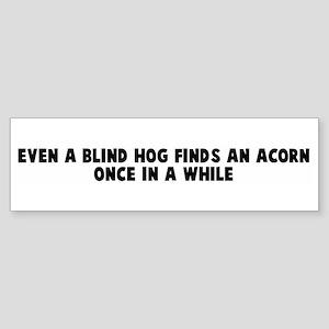 Even a blind hog finds an aco Bumper Sticker