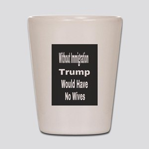 Without Immigration Shot Glass